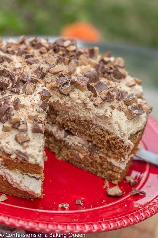 Chocolate Chip Chiffon Cake Recipe