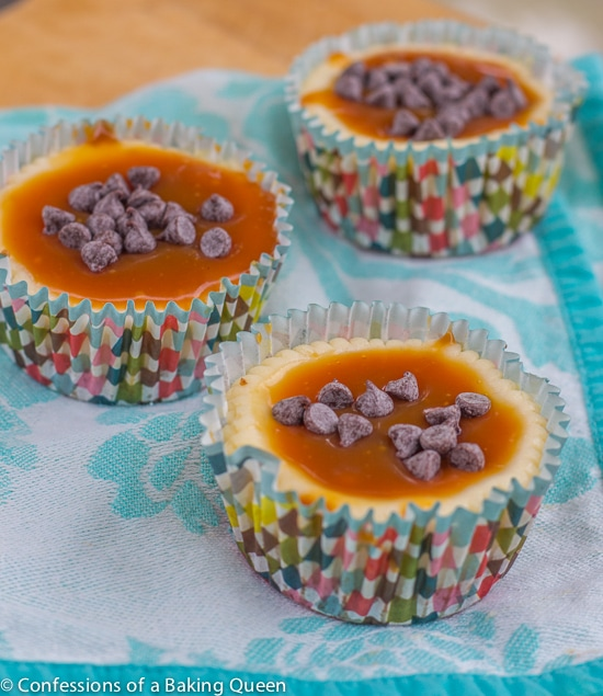 Rolo Cheesecake Cups sitting on a blue tea towel